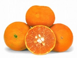 tangerine peel and weight loss